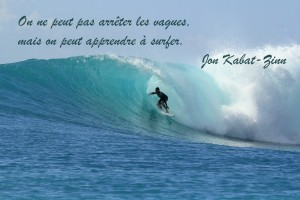 surf citation